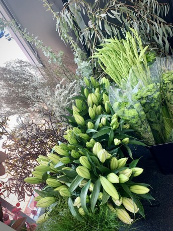 FRESH assorted large & fragrant flowers WHITE & GREEN