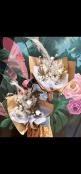 Preserve Bouquet Neutral Tones